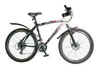 Велосипед Stinger Х26955 Alpina R200