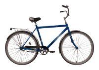 Велосипед Forward Dortmund 101 (2010)